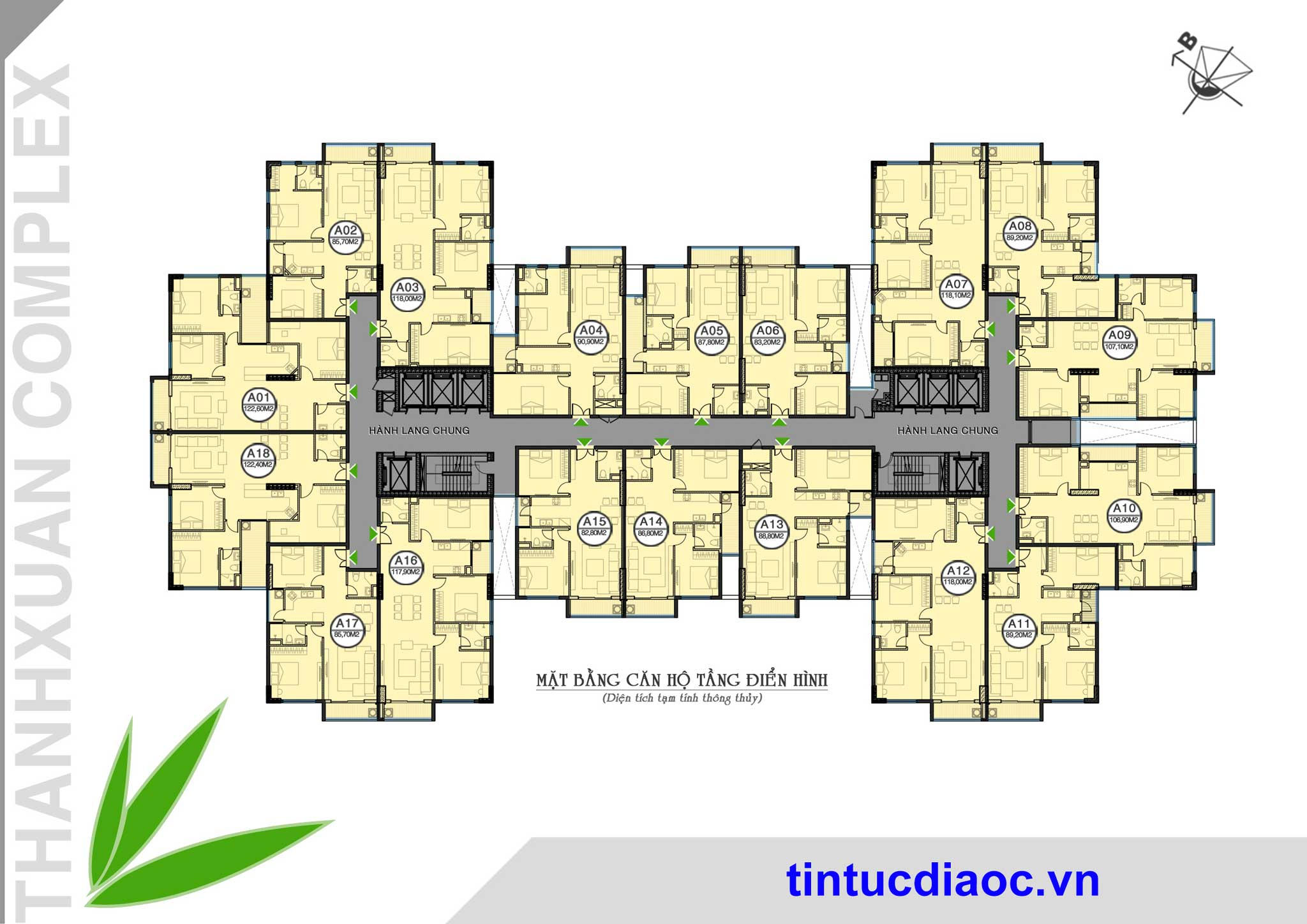 Mặt bằng căn hộ Chung cư Thanh Xuân Complex - Hapulico 24T3